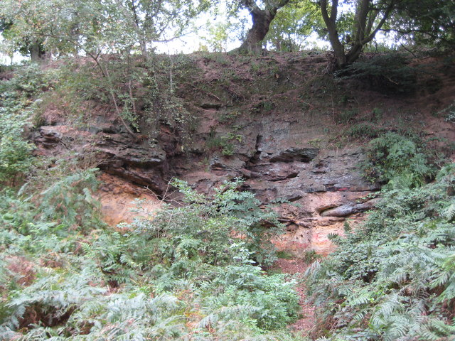 Pulborough: Sandstone cliff