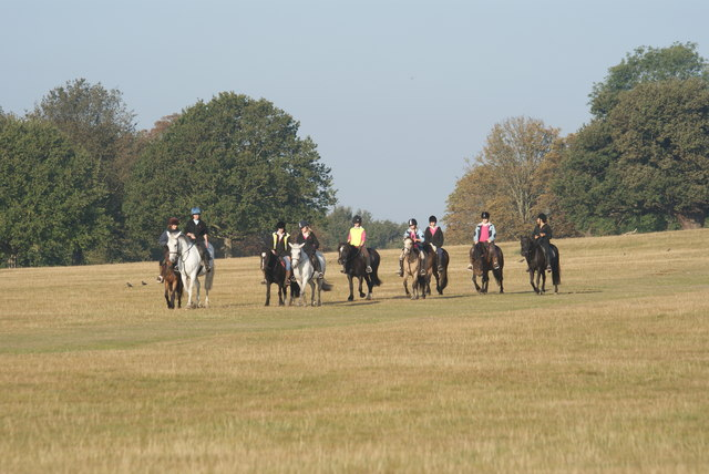 Horse Riders in Richmond Park