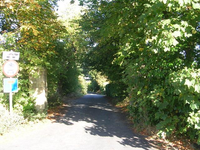 Bilton Hall Drive - Forest Lane Head