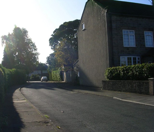 Maple Close - Forest Lane Head