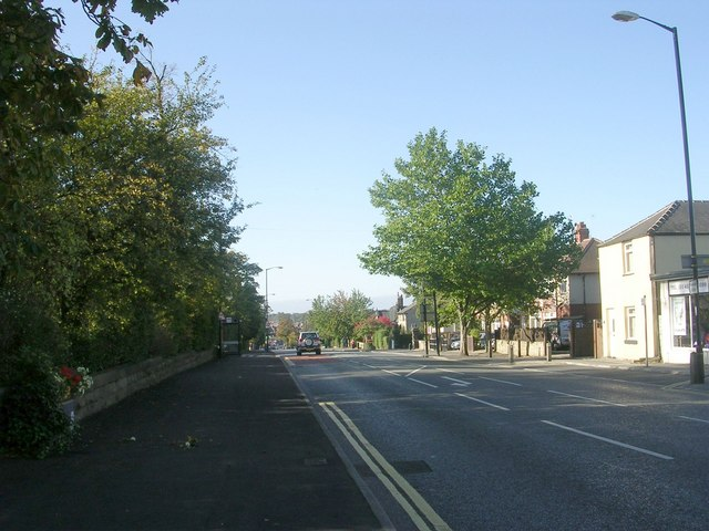 High Street - viewed from Bogs Lane