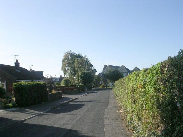 Hillbank Grove - Bogs Lane