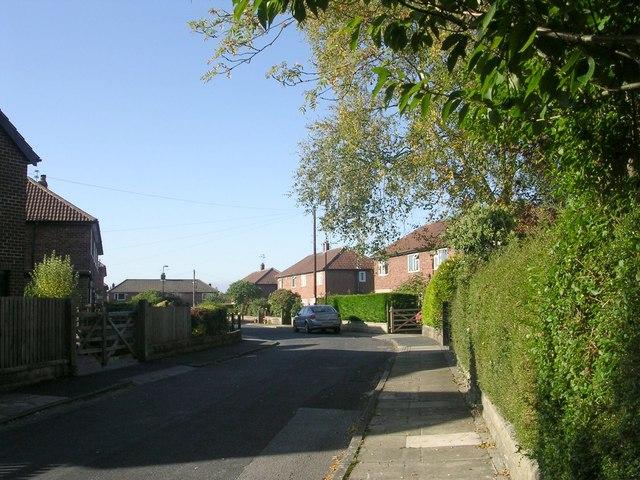 Hillbank Road - Bogs Lane