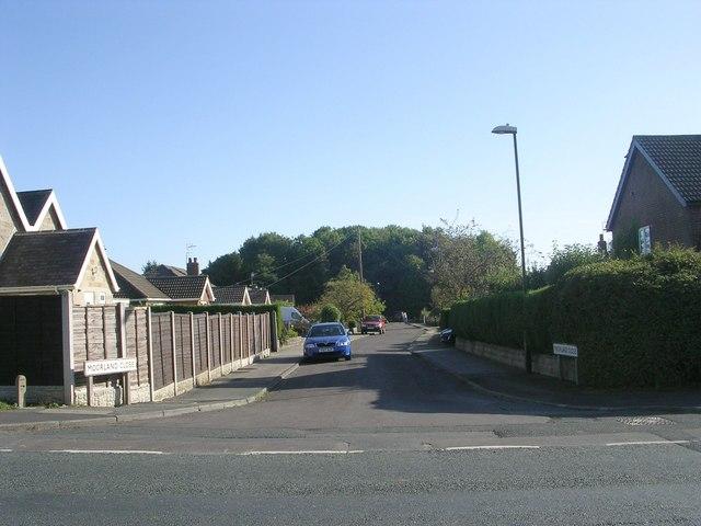 Moorland Close - Forest Lane