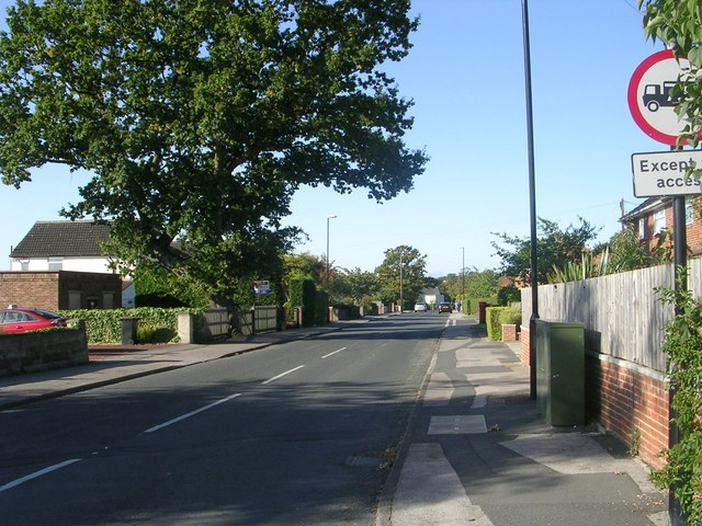 Forest Avenue - Forest Lane