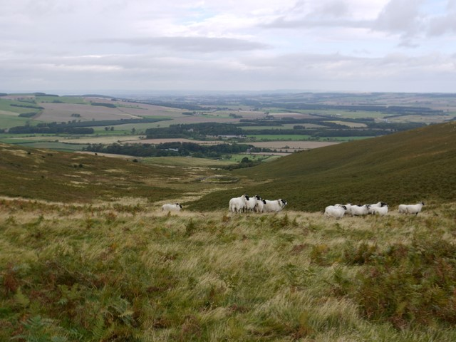 Valley west of White Law