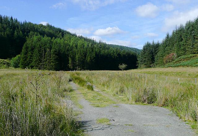 Bridleway, upper Irfon Valley, Powys
