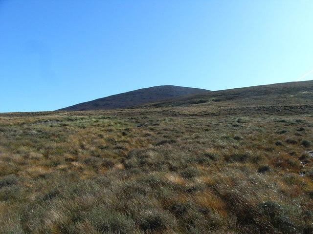 Fir Bog & Gathering Cairn