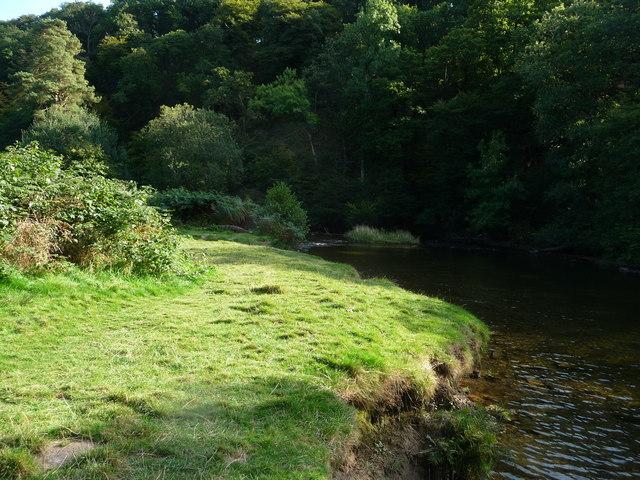 Exmoor : The River Barle, Riverbank & Meander