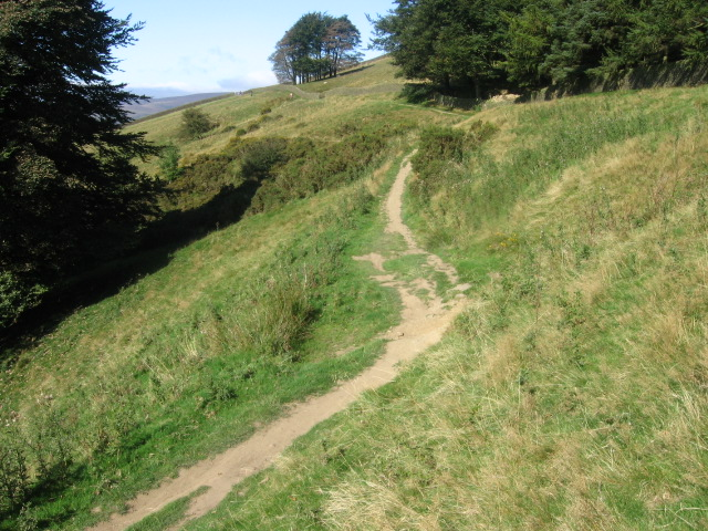 Footpath near Top Plantation on Win Hill