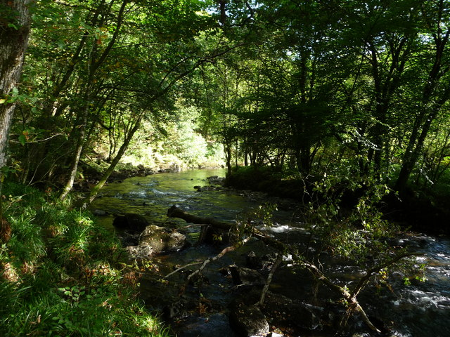 Exmoor : The River Barle at Tarr Steps Woods