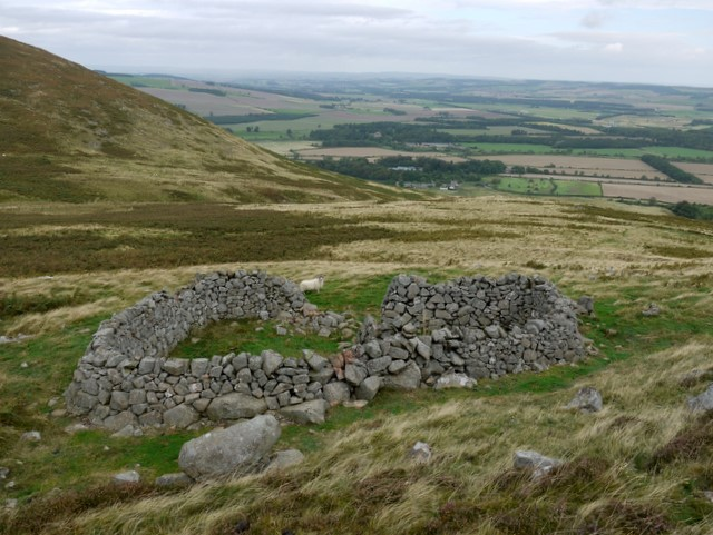 Sheepfold below Yeavering Bell