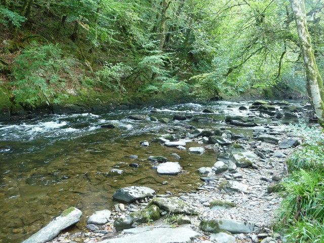 Exmoor : The River Barle & Riverbank
