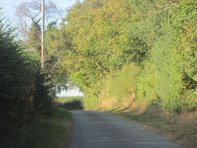 Up the road from Wilcott marsh