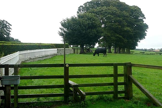 Branton Farm