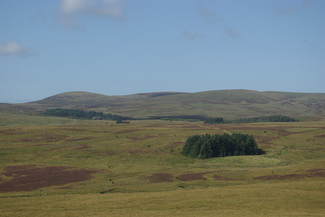 View NW from Studie Knowe