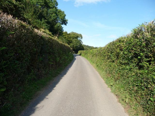 Exmoor : Country Road