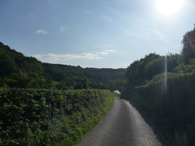 Exmoor : Country Road & Sunshine