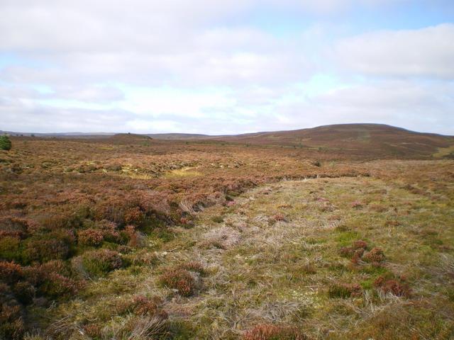 Moorland at the head of the Nant y Ddwy Wern