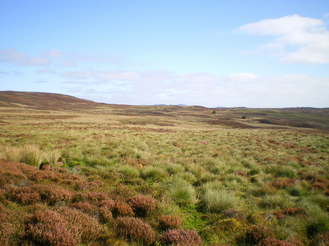 General moorland view above Creignant