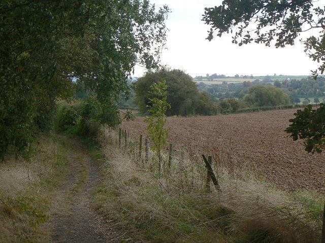 Bridleway towards Lowdham