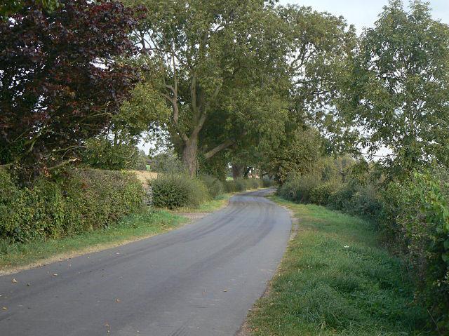 Gonalston Lane