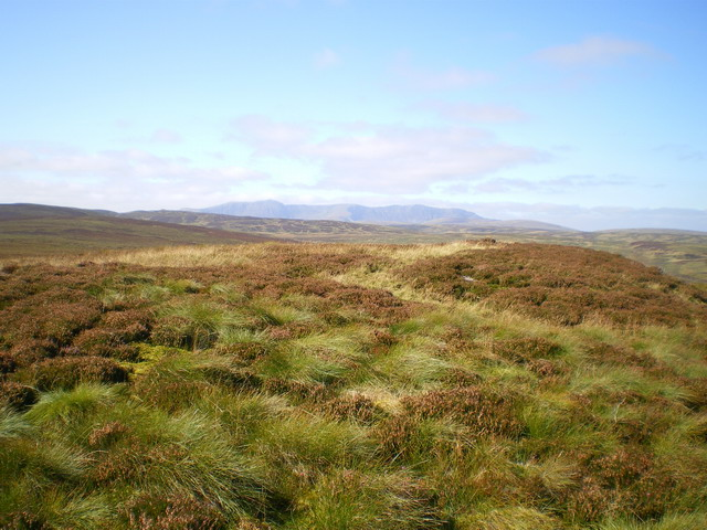 Heather moorland above Blaen Cownwy