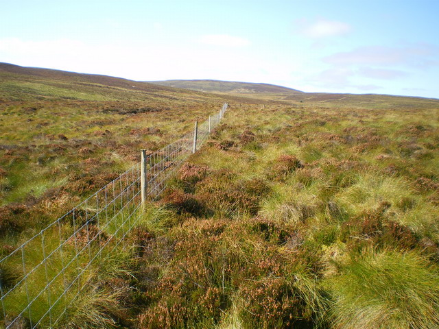 A fence in the valley