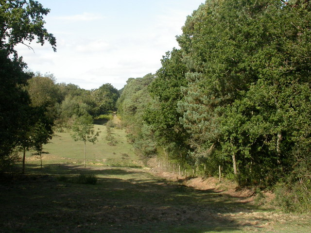Broadley, heath and wood