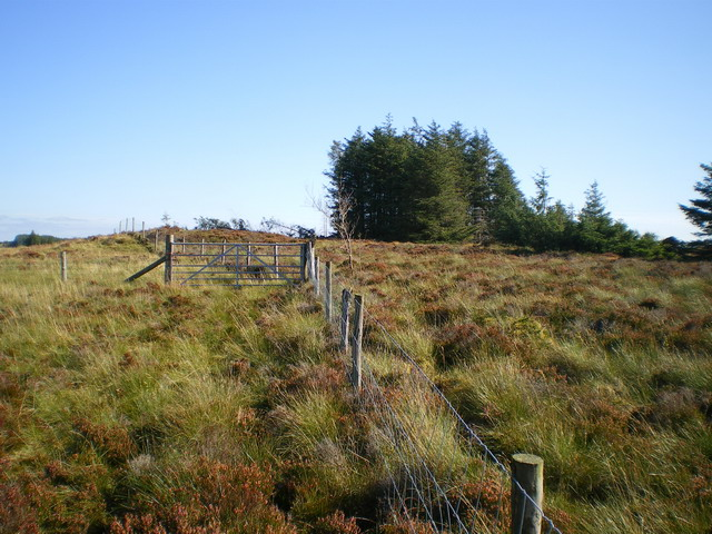 Fences and gate near point 486m
