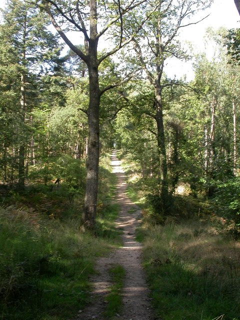 Broadley Inclosure, track