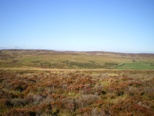 Heather moor above the Afon Cownwy