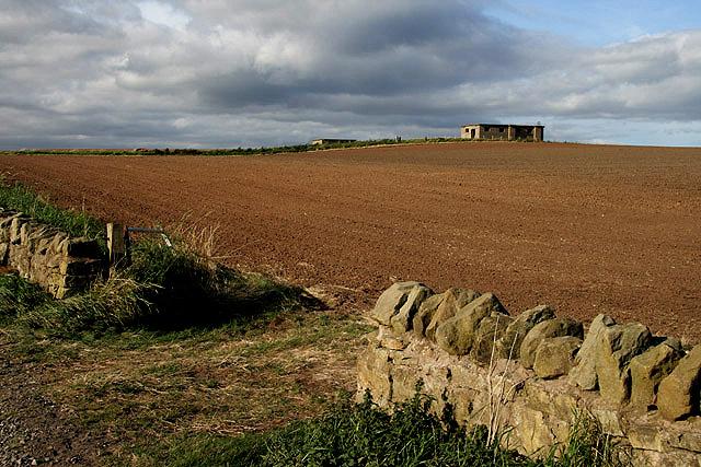Northumberland farmland