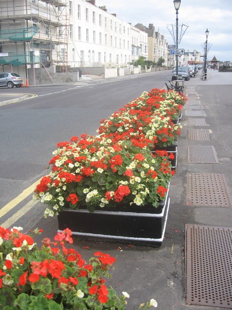 Burnham Promenade Flowers