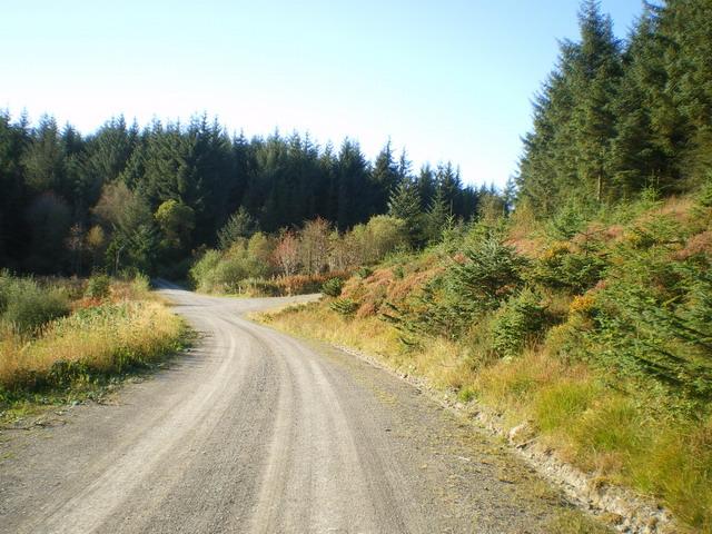 Track crossroads above Tyddyn Amlwg