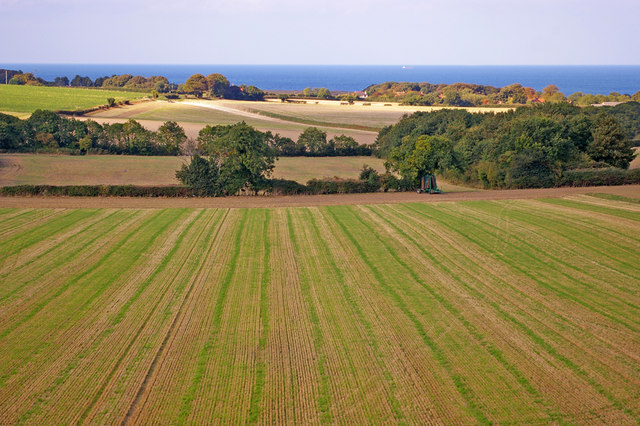 Farmland near Weybourne, Norfolk