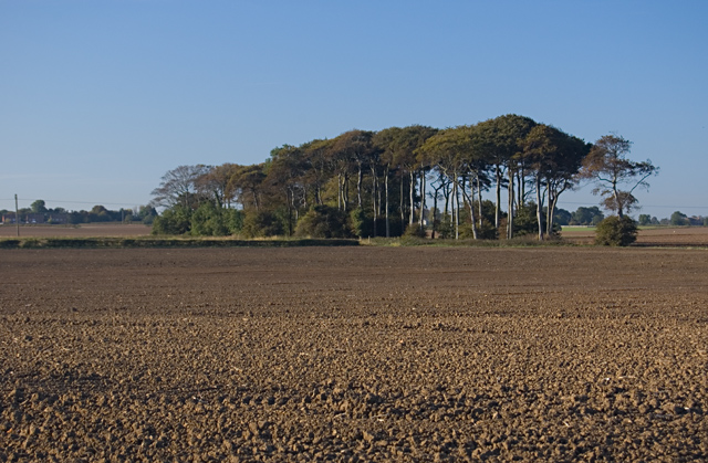 South of Humbleton