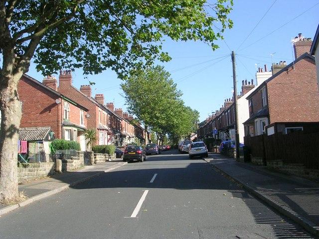 Harrison Grove - The Avenue