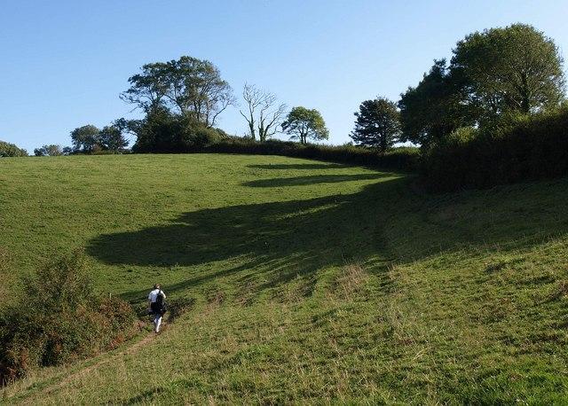 Field below Combe Lane