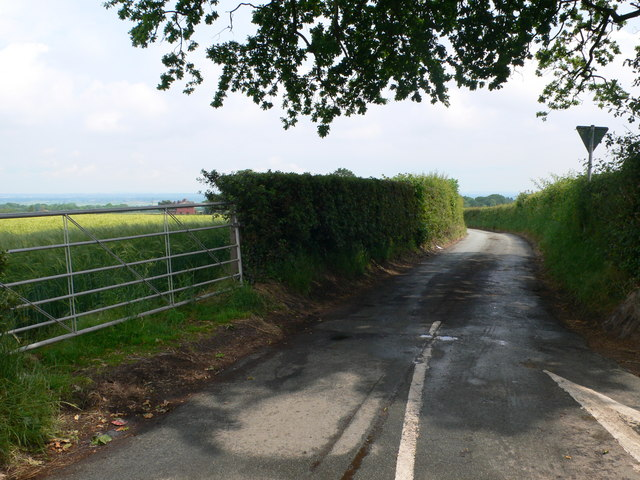 Cobbler's Lane