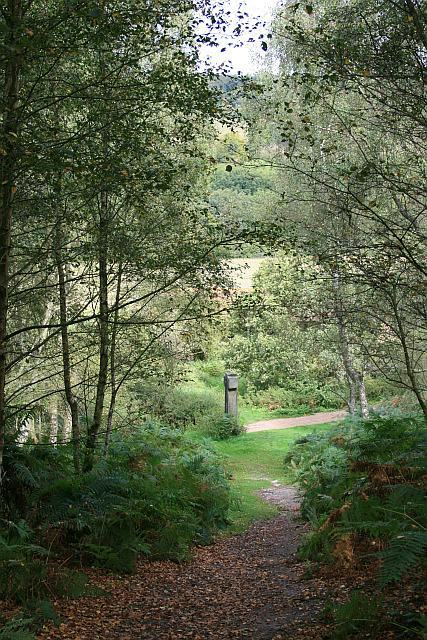 Abinger Roughs: path to Wilberforce Memorial