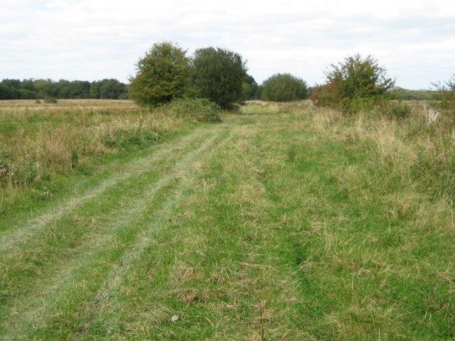 Amberley Wild Brooks: Wey - South Path