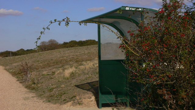Bus shelter at nature reserve
