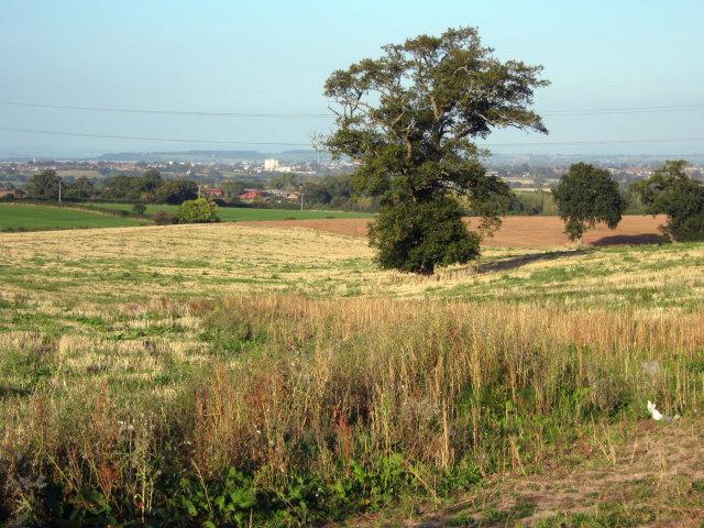 Fields at  Huntstile