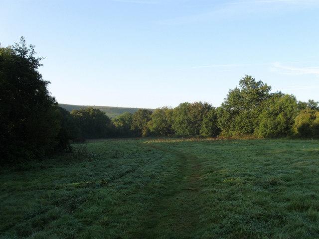 Upper Sheepwash Field