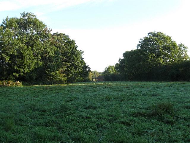 Rickyard Field