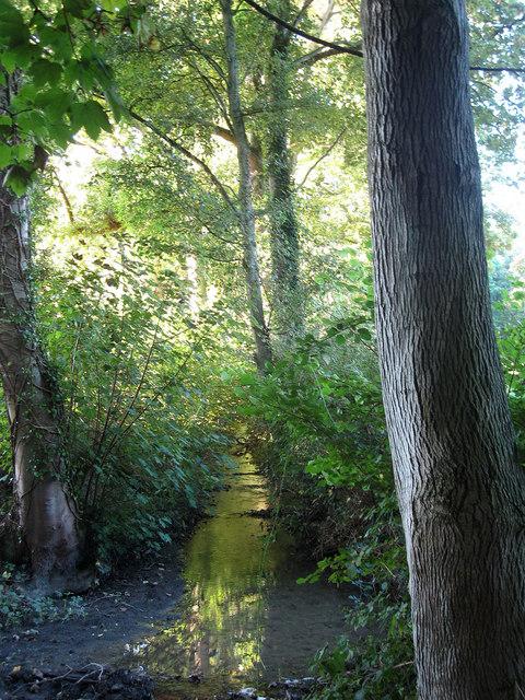 Stream near Plumpton Place