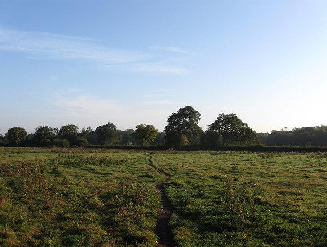 Lower Petlands