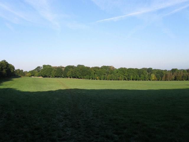 Turnpike Meadow
