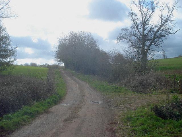 Entrance lane to Uphampton Farm - 3